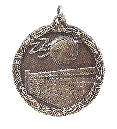 Economy Volleyball Medal